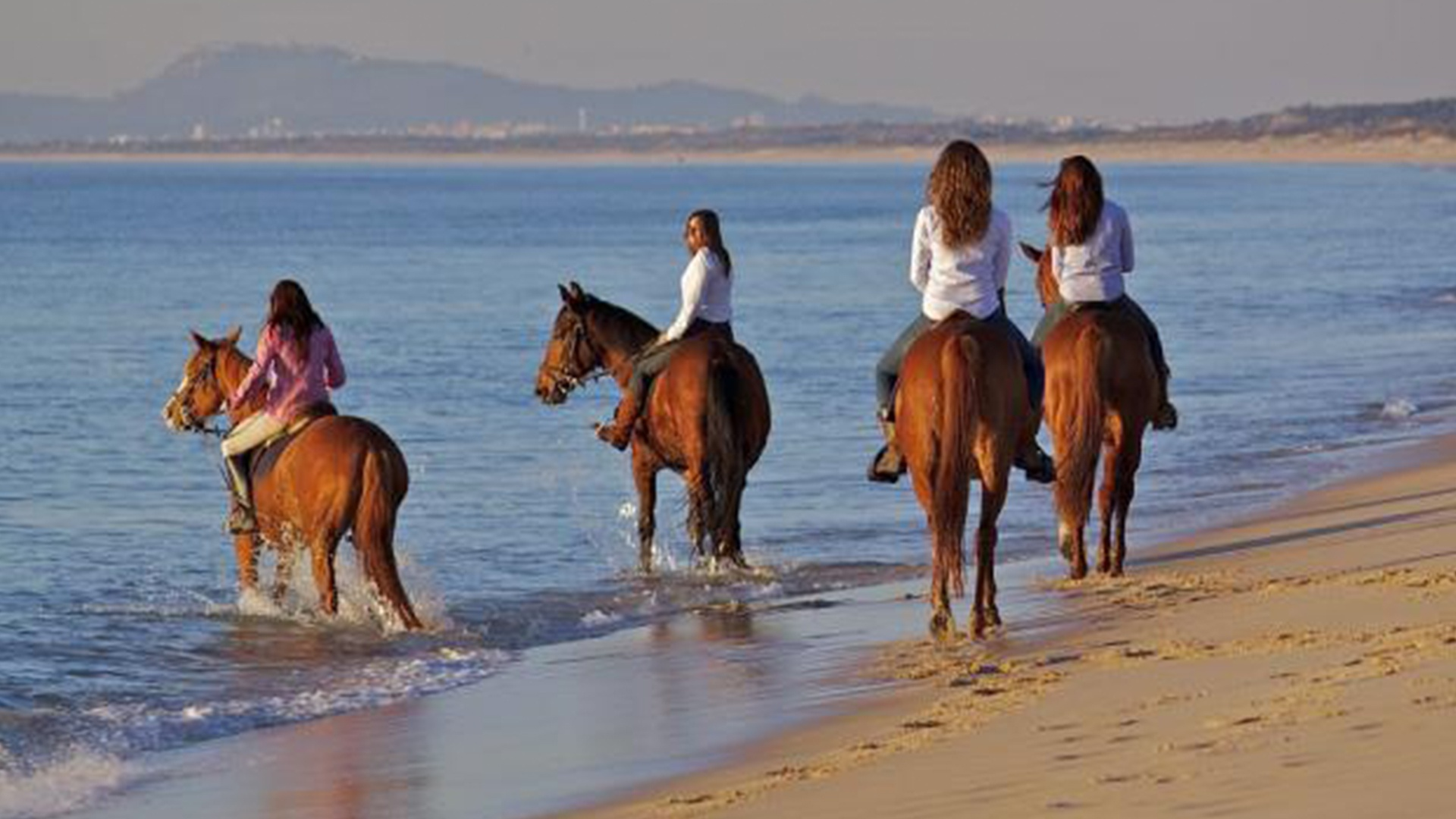 Horse Riding in the Beach RM Guest House
